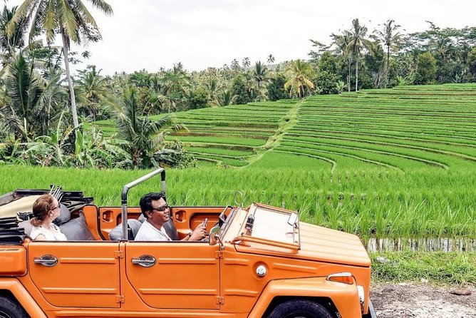 VW Safari - Bali Safari Day Tour