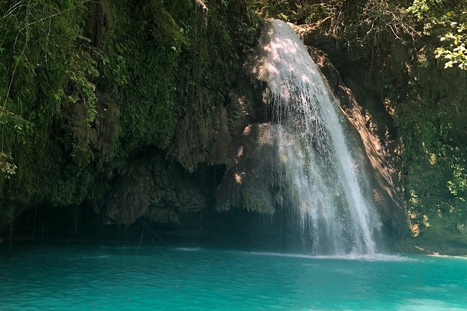 Oslob Whale Shark and Kawasan Falls Day Tour photo 2