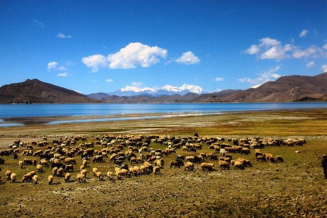 Yamdrok Lake Homestay Tour