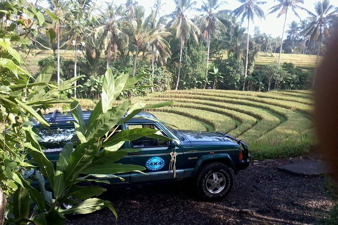 Explore Your Adventure While In Bali With A Jeep 4x4 Tour With Us
