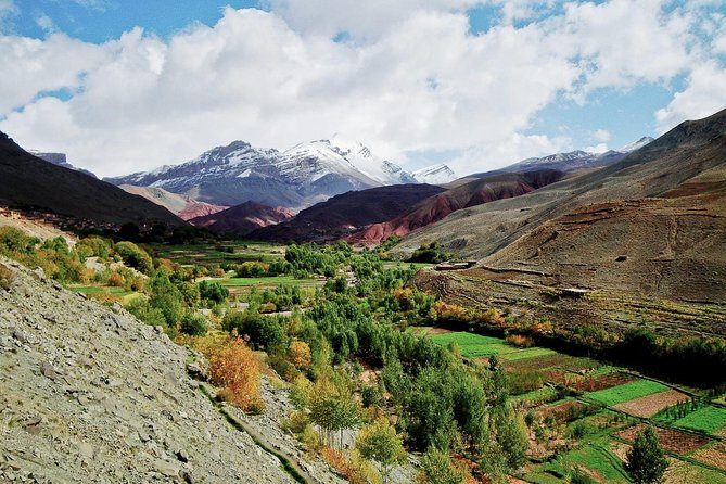 Private Tour: Day Trip to Ourika Valley from Marrakech photo 6