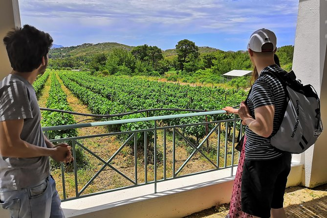 Meet the AUTHENTIC Rhodes Tour - PRIVATE Half-Day or Full-Day Tour
