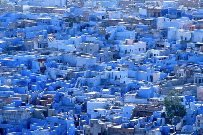 Jodhpur Blue City Walking Tour