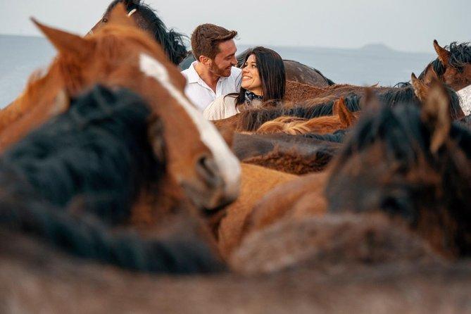 Wild Horses Photography Tour