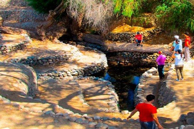 VIP Tours Nazca Aqueducts