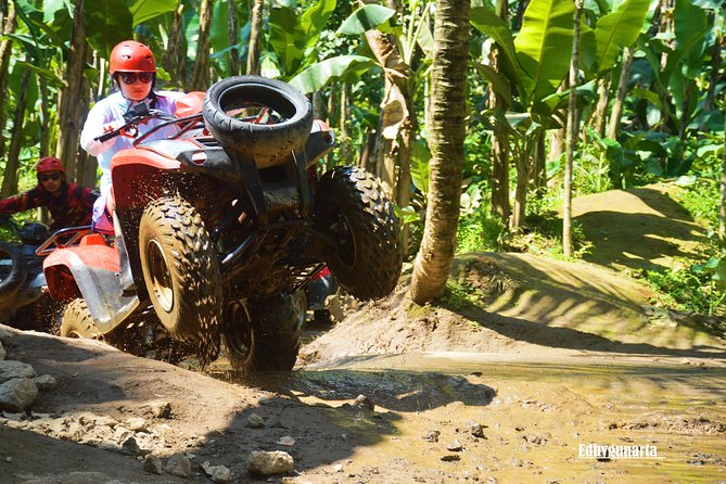 Bali ATV Quad Bike and Kintamani Volcano Tour