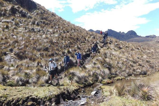 Day Tour - Inca Trail Cajas National Park