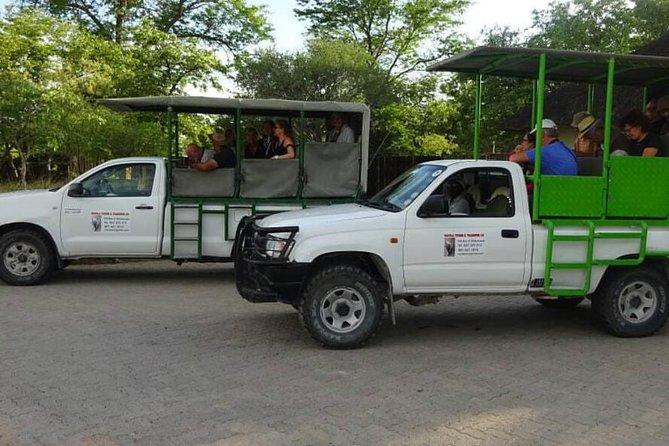 Safari in Etosha national park with professional tour guides born in Etosha.