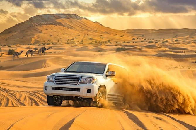 Thrilling Red Dune Safari + Quad Bike and BBQ Dinner and Belly Dance