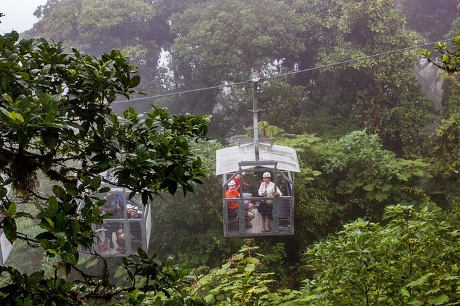 Sky Tram & Sky Trek From Monteverde