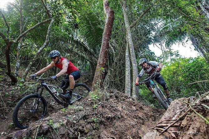 SINGLETRACK MOUNTAIN BIKE - Guided through the jungle