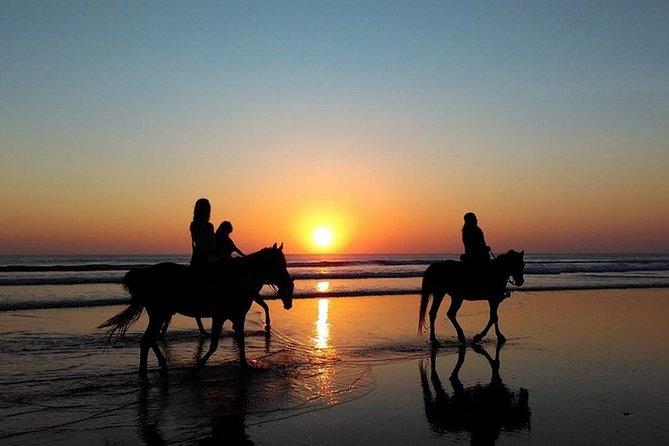 Puerto Plata: Sunset Beach Horseback Riding