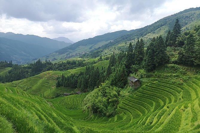 Private Day Tour: Longji Rice Terraces