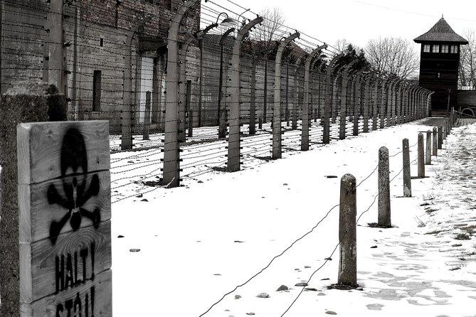 From Krakow: Auschwitz-Birkenau Regular Tour