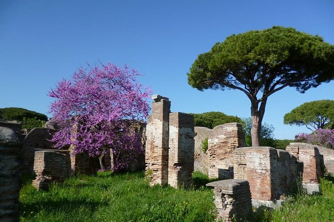 Ancient Ostia from Rome Private Tour with Tickets, Pick-up and Drop-off