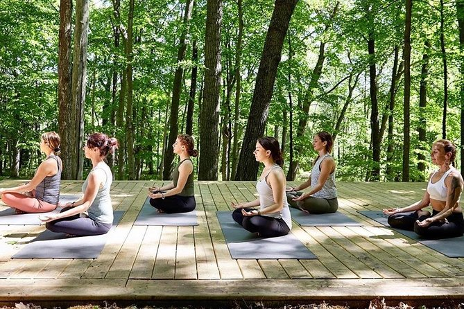 Yoga and Meditation on the Volcano Day