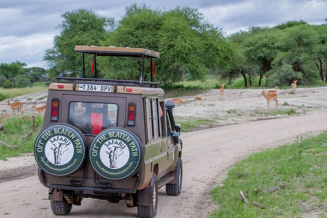 4 Days Tarangire , Ngorongoro ,Manyara and lake Eyasi village