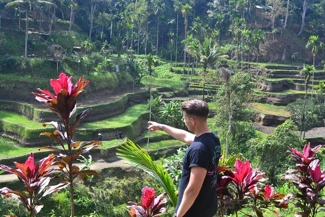 Ubud Half Day Customize Tours
