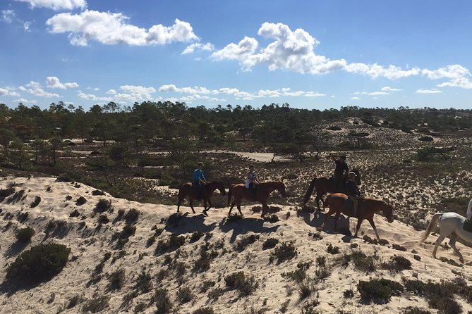 Horse Riding Tour on the Beach Lisbon region photo 14