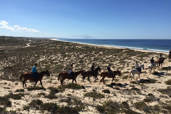 Horse Riding Tour on the Beach Lisbon region photo 9