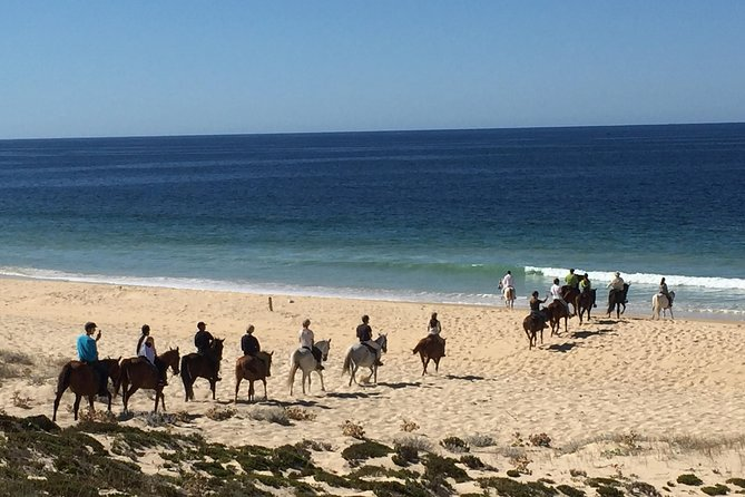 Horse Riding Tour on the Beach Lisbon region photo 8
