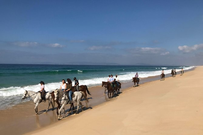 Horse Riding Tour on the Beach Lisbon region photo 7