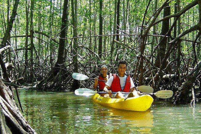 Damas Island Kayaking Tour From Manuel Antonio