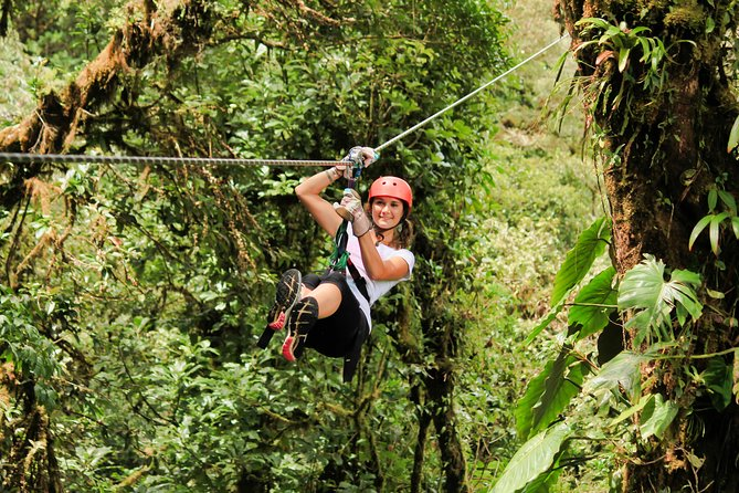 Canopy Zipline -Hanging Bridges & Butterfly Garden From Monteverde