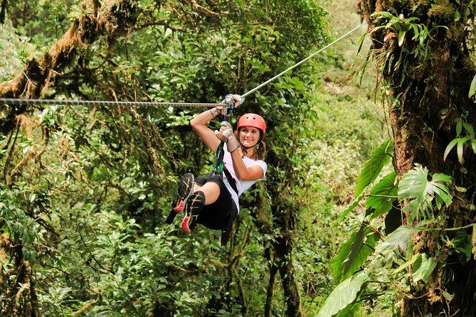 Canopy Zipline -Hanging Bridges & Butterfly Garden From Monteverde
