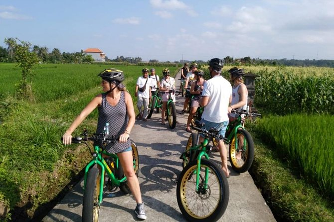 Ubud Rice Terraces E-Bike Half Day Tour (optional) Waterfall
