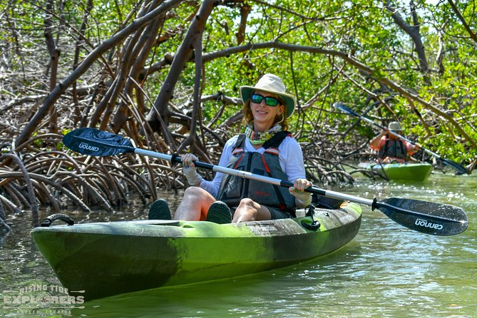 Mangrove Tunnels & Mudflats Kayak Tour