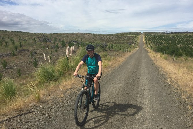 MTB in Auckland forests and New Zealand craft beers photo 9