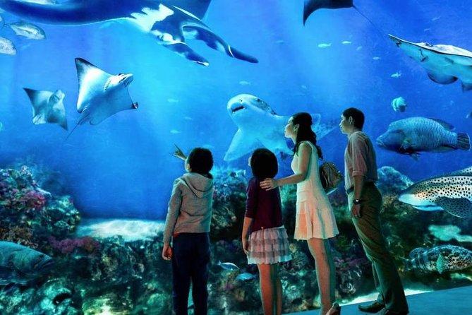 Sea Aquarium Admission E Ticket 2020