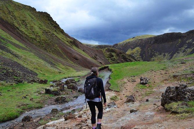 Tour escursionistico di primavera calda della valle di Reykjadalur da Reykjavik