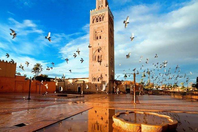 Excursión de día completo a Marrakech desde Casablanca