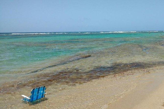 Boswandelen, speleologie en snorkelen vanuit San Juan