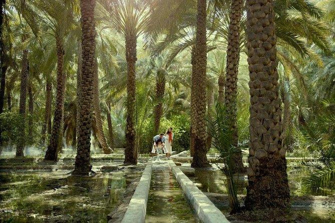 Faça seu próprio tour pela cidade de Al Ain - tour privado de Abu Dhabi