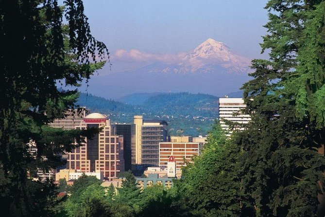 Tour combinado de Portland Trolley, Falls and Gorge y Willamette Valley