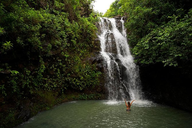 Oahu Private Hiking Tour