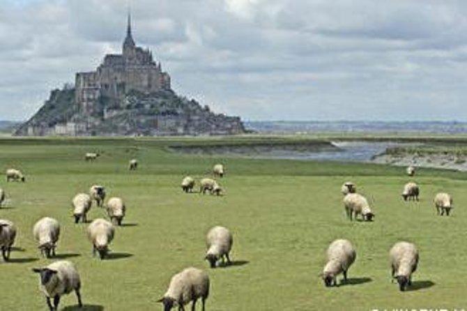 Excursão de luxo por Mont Saint-Michel com um guia profissional - Mybus