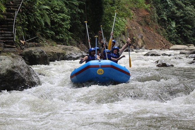 All Inclusive: Bali White Water Rafting (Ayung River)