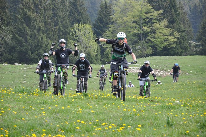 Mountain biking in Annecy - Descent from Semnoz to Annecy (ascent by shuttle)