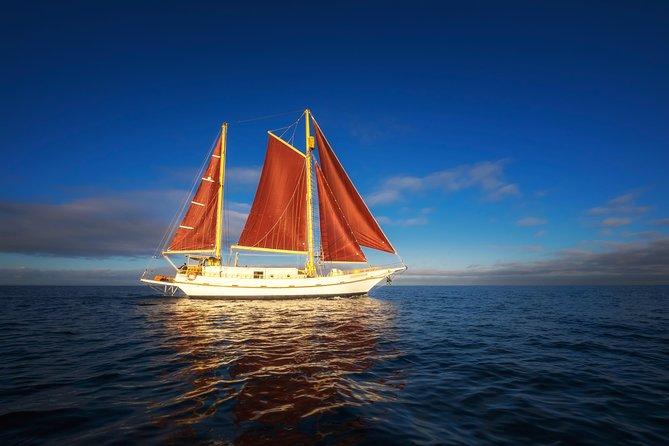 Australia Day Port Phillip Bay Segling och Yarra River Cruise med traditionellt timmerhögt skepp från Melbourne