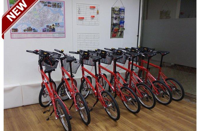 Half-Day Bike Tour of Singapore