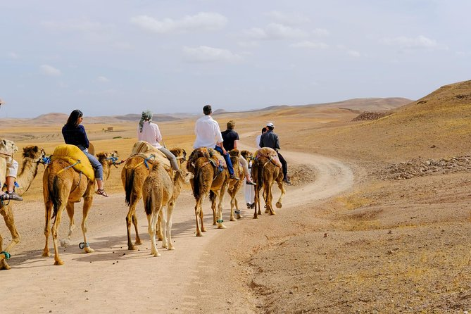 Marrakesh Day Trip From Casablanca With Camel Ride And Lunch At Agafay Desert