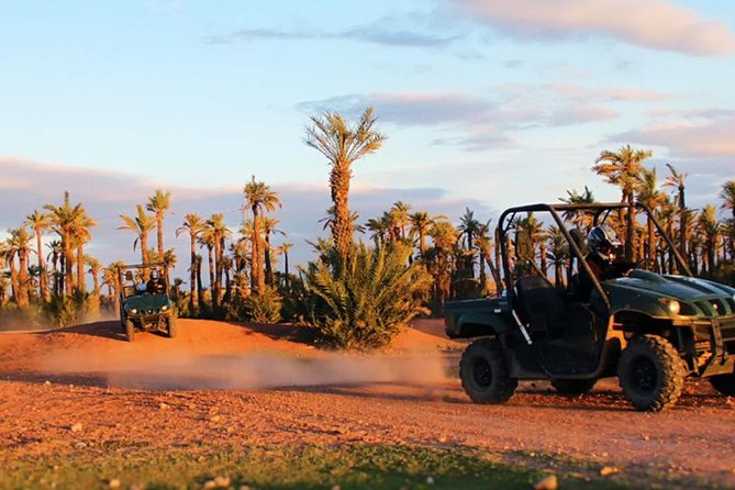 Buggy ride in the palm grove of Marrakech