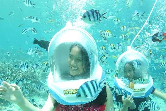 Bali Sea Walker Including Hotel Transfer