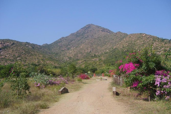 Tiru Arunachala Tours - Tiruvannamalai Tour Guide