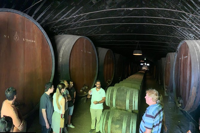 Setúbal wine tour two wineries private tour