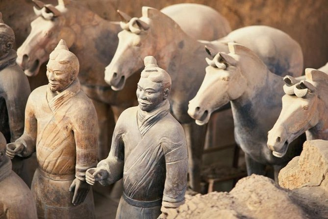 Zhengzhou Private Trip to Xi'an Terracotta Warriors & City Wall by Bullet Train